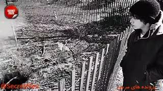5 مکان ترسناک روی زمین که رها و از دسترس خارج شدند! (مستند کوتاه) شامل توضیحات