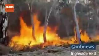 تصاویری از  آتش سوزی های جدید در مناطق کوهستانی استرالیا