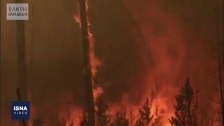 آتشی که نیم میلیارد جان را گرفت