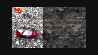 هفتم قربانیان حادثه هوایی