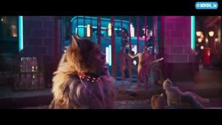 تریلر فیلم Cats با زیرنویس فارسی