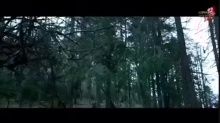 the wolf teaser 2