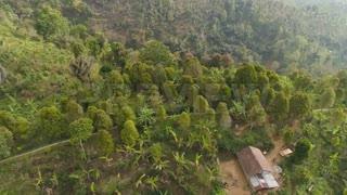 فوتیج زمین کشاورزی در کوه Farmland In The Mountain