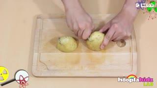 تبدیل سیب زمینی به باطری