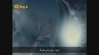 نماهنگ شهادت حضرت زهرا (س) - میثم مطیعی