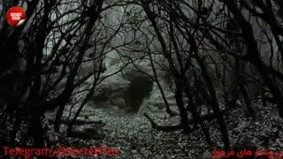 ماجرای واقعی قتلهای وحشتناک مزرعه هینترکایفک! (مستند کوتاه ترسناک) زیرنویس+توضیحات