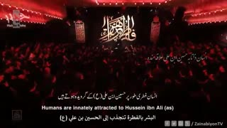در دل ها جز غم تو بی تاثیره - مهدی رسولی | English Urdu Arabic Subtitles