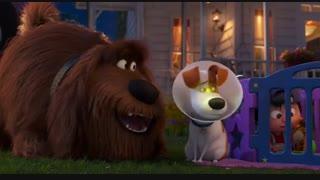 انیمیشن کمدی ماجراجویی زندگی پنهان حیوانات خانگی2(The Secret Life of Pets2019)(کودکانه)