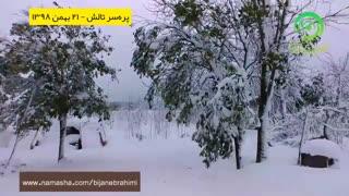 پرهسر تالش - یادگار برف سنگین ۲۱ بهمن ۱۳۹۸