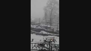 برف زمستانی گیلان