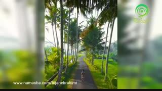 جزیرهی بهشتینوسا پنیدا در اندونزی