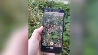 ویدیو هندزان پیکسل 4A گوگل که مشخصات فنی و جزئیات دوربین آن را لو میدهد