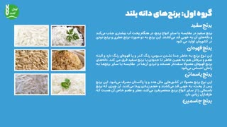 آشنایی با انواع برنج در سرتاسر دنیا