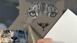✅ آموزش نقاشی پلنگ کوهستان برفی با مدادرنگی